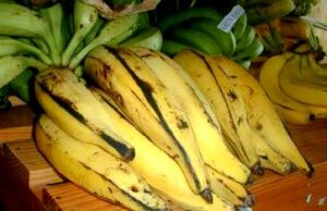 Plantain (Big Bunch)